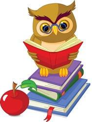 An owl with books
