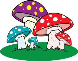 A group of mushrooms