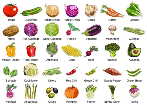 List of vegetables names