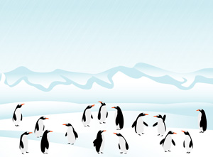 a population of penguins