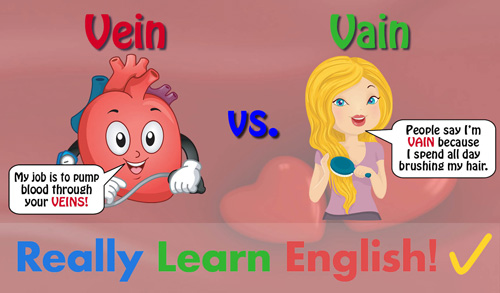 Vein vs. Vain, What Is the Difference?