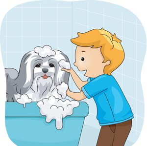The dog needs a bath because its fur is so coarse.