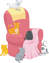 Cats behind chair